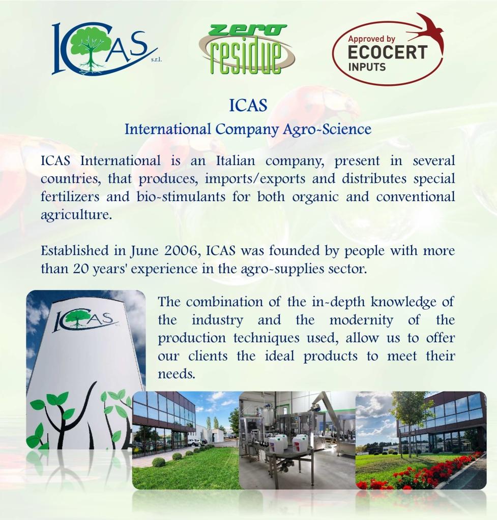 CATALOGO ICAS 2019 ENG - Sfogliami it